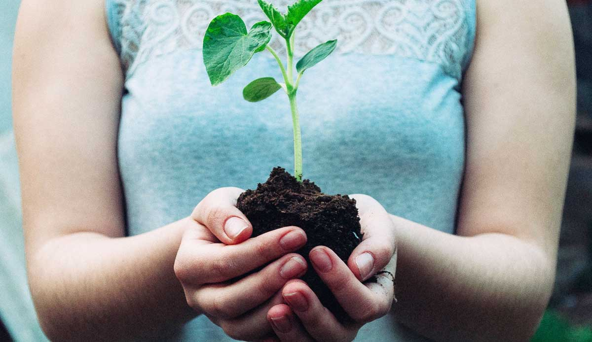 umweltschutz-im-unternehmen